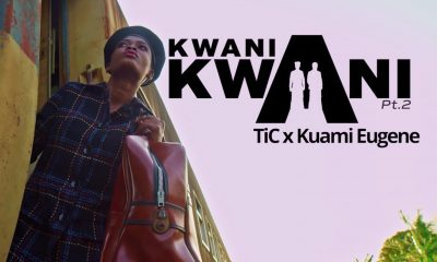 Music Video: Kwani Kwani(pt.2) Tic Ft. Kuami Eugene