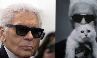 #RichCat: Karl Lagerfeld's pet to inherit designer's $200million fortune